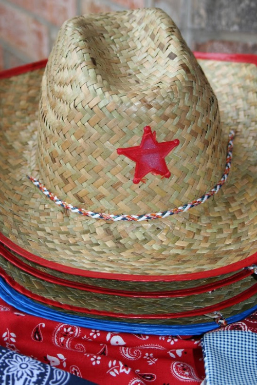 cowboy hats for cowboy twin birthday party