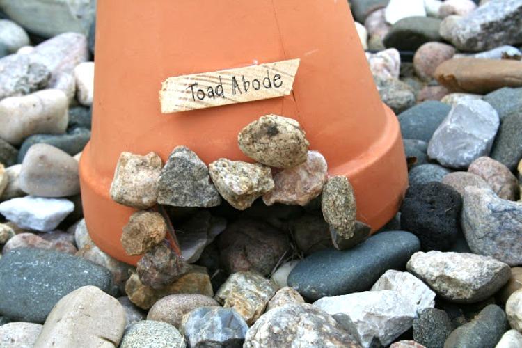 DIY toad house craft