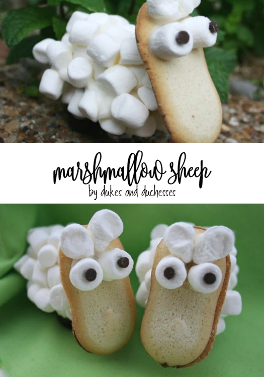 marshmallow sheep for easter