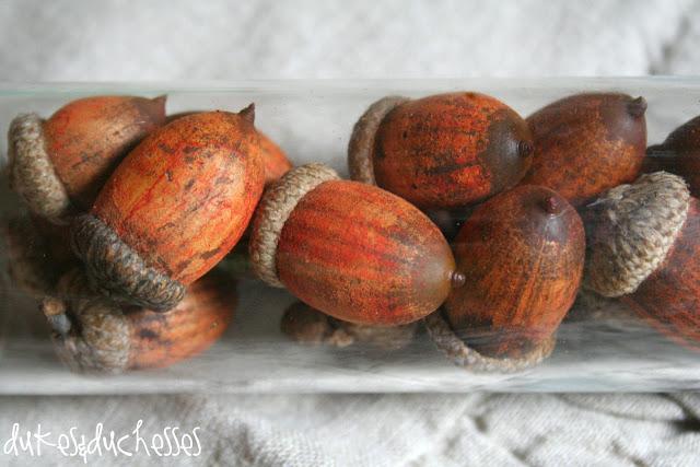 RIT Dye - dyeing acorns