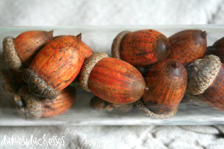 orange dyed acorns
