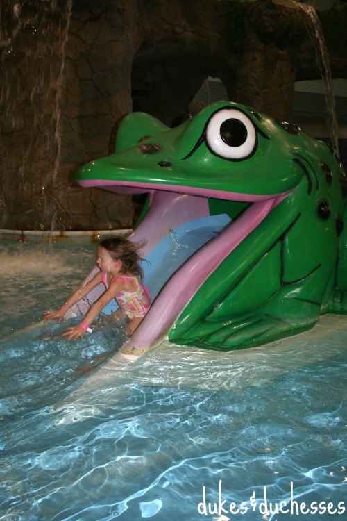frog slide at castle rock resort