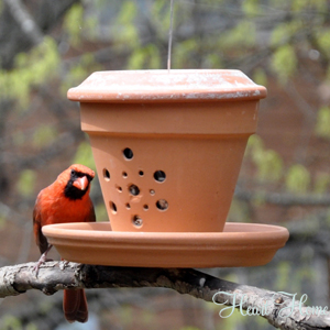 pot. bird feeder