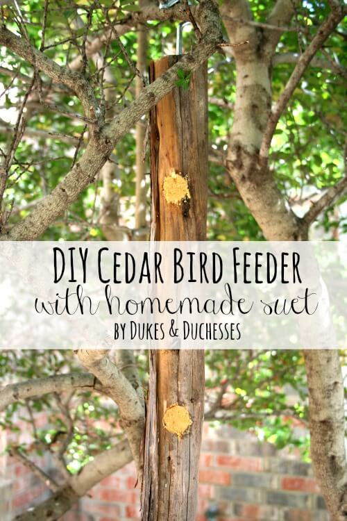 DIY cedar bird feeder with homemade suet