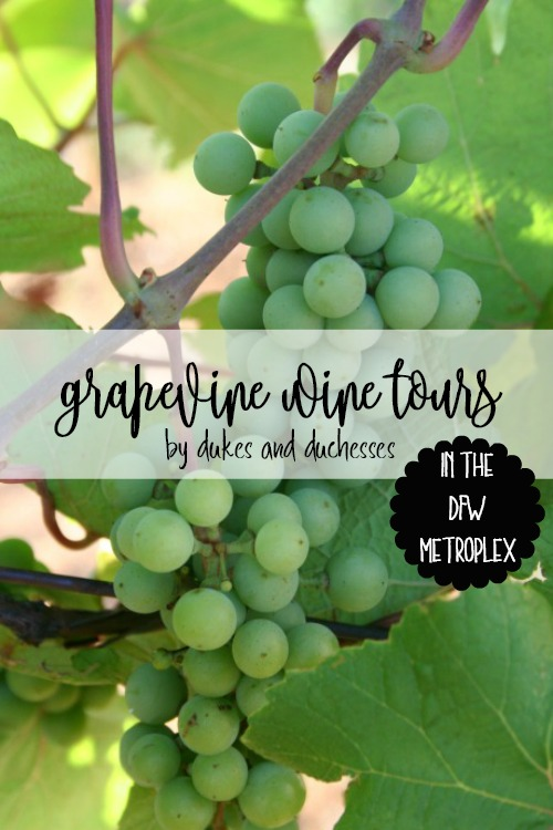 grapevine wine tours in the dfw metroplex