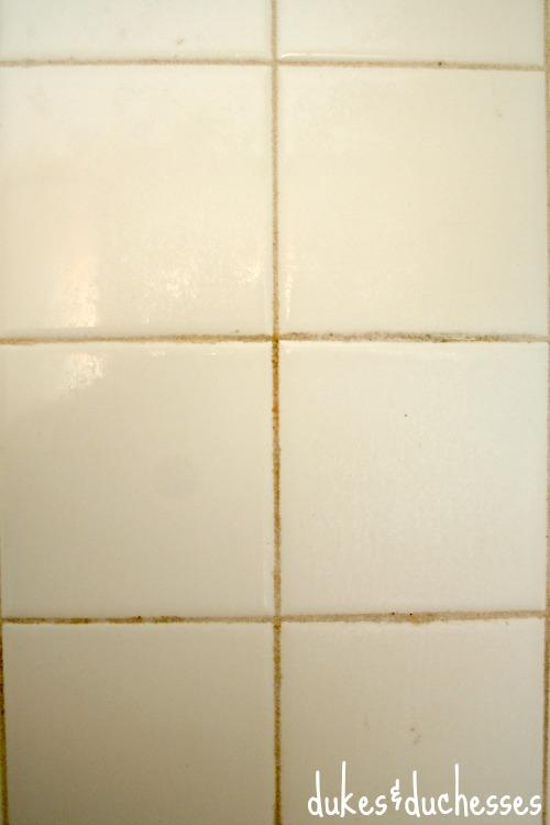 mildew in shower