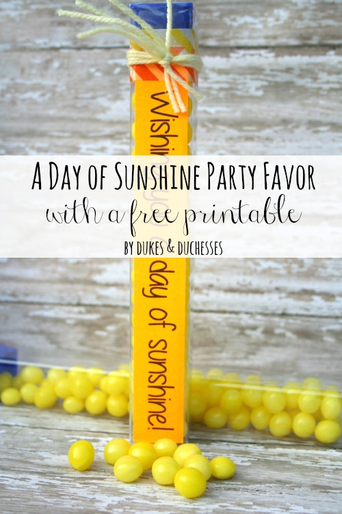 a day of sunshine party favor D
