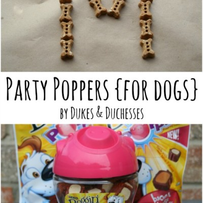 Party Poppers™ {for Dogs}