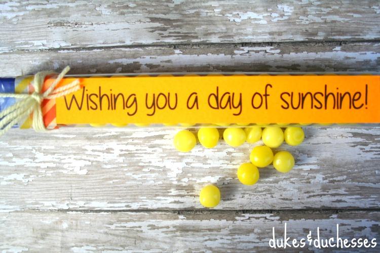 sunshine party favor D