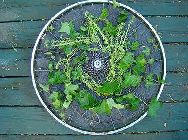 bicycle wheel rotating arden