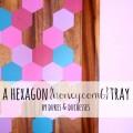 hexagon honeycomb tray