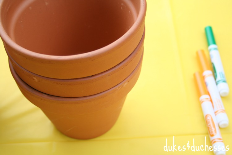 flower pots for decorating