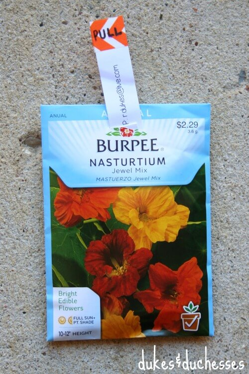 seed packet invitation