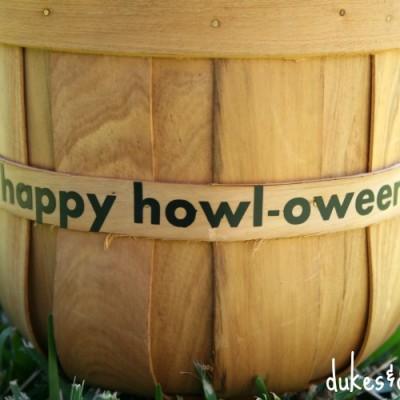 Halloween Treats for Dogs