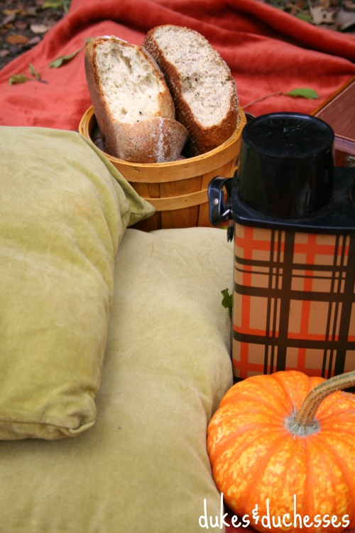 cushions for a fall picnic with market street