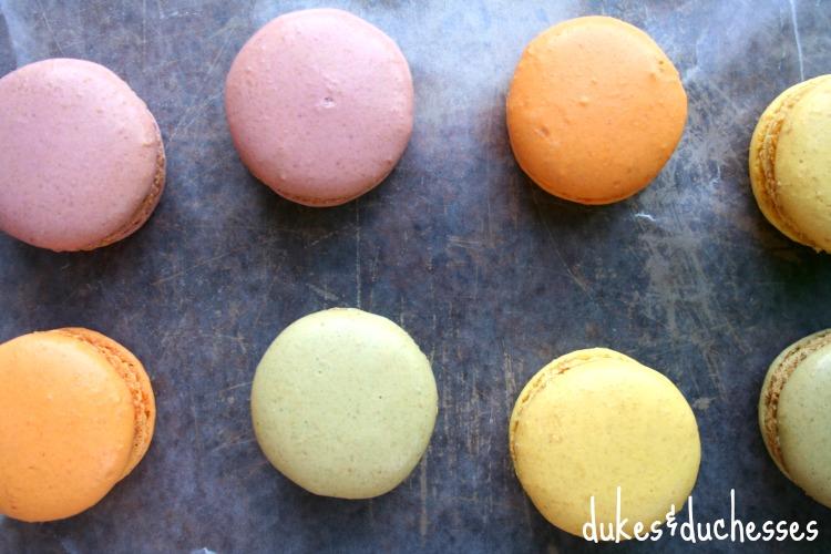 macarons from Trader Joe's