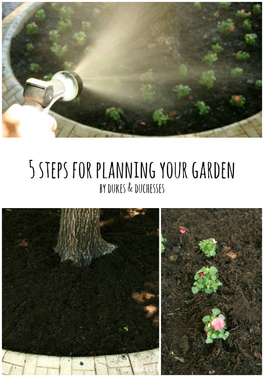5 steps for planning your garden