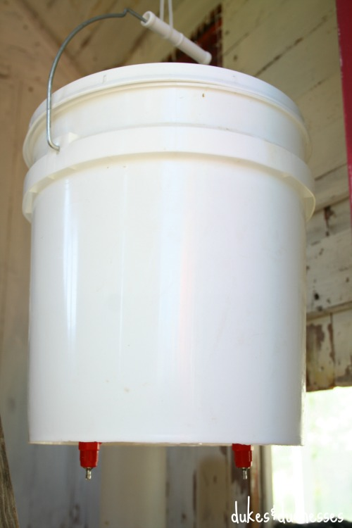 DIY water bucket for chickens