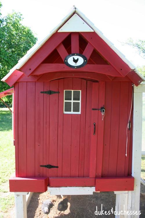 front of chicken coop
