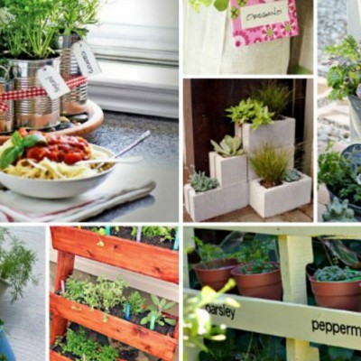 25+ Ways to Make an Herb Garden