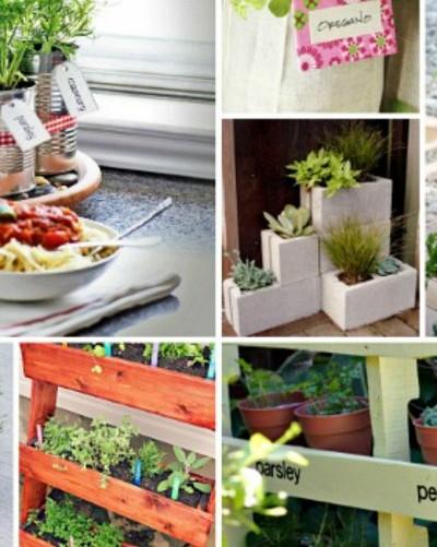 herb garden visual