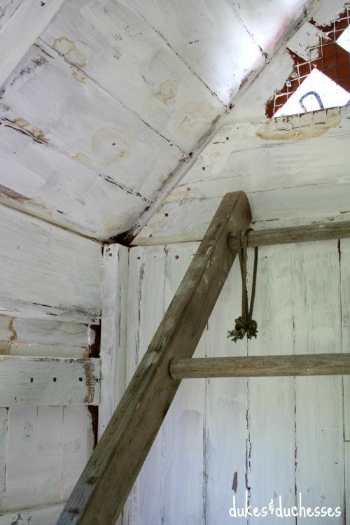whitewashed walls in chicken coop