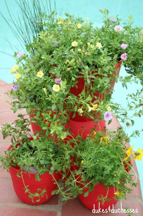 tiered container garden