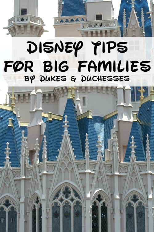 disney tips for big families