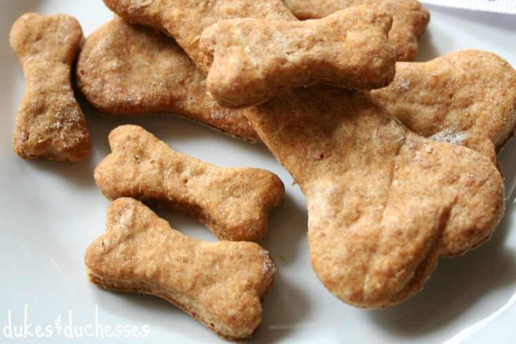 dog-biscuits