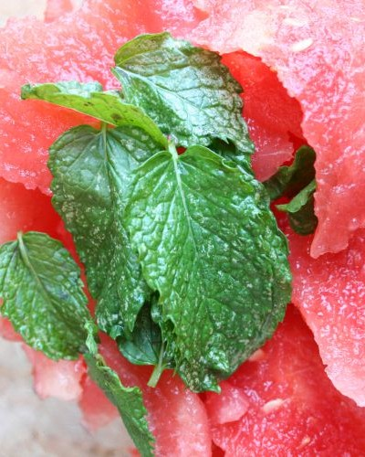 mint and watermelon in blender