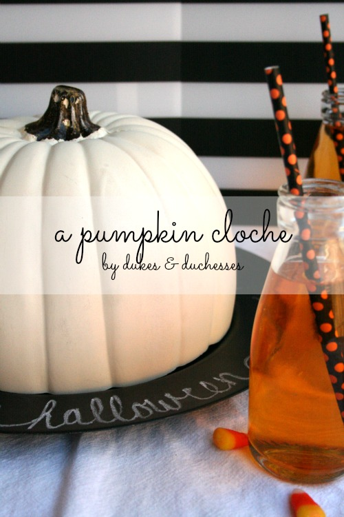 a pumpkin cloche