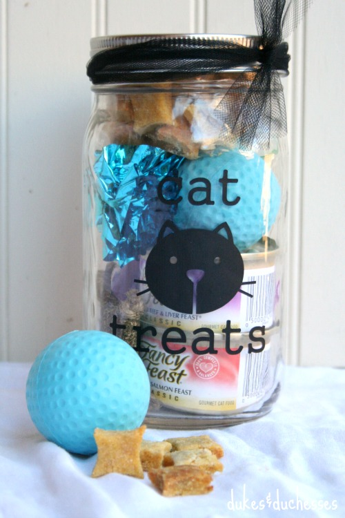 cat lover mason jar gift