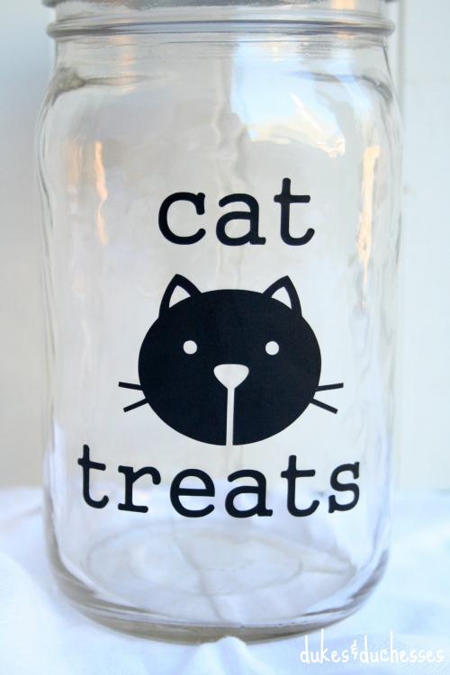 mason jar for cat treats