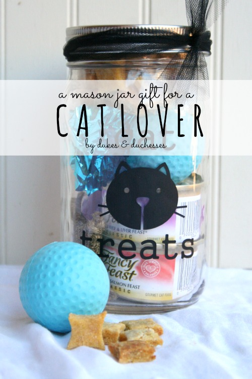 mason jar gift for a cat lover