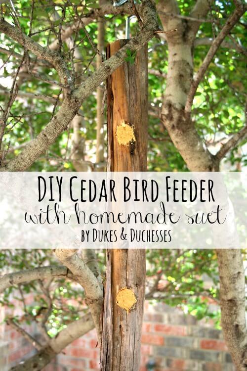 DIY-cedar-bird-feeder-with-homemade-suet