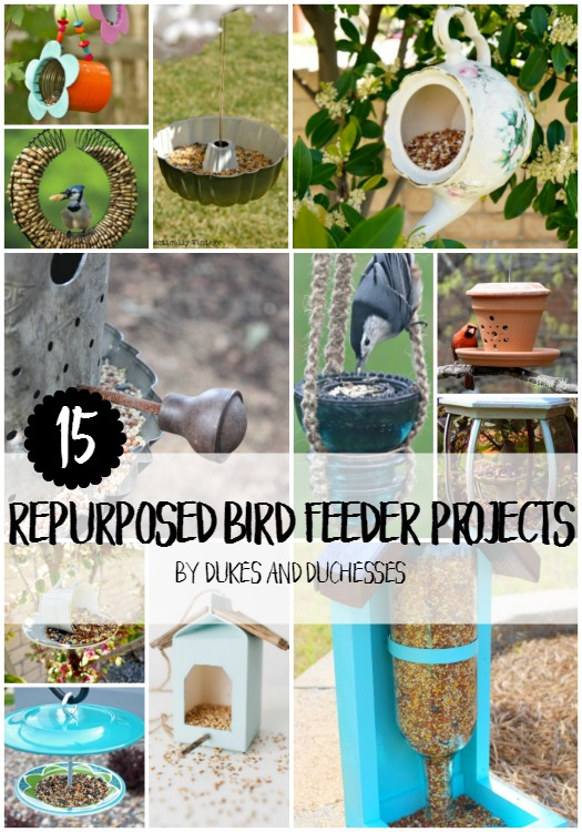 15 repurposed bird feeder projects