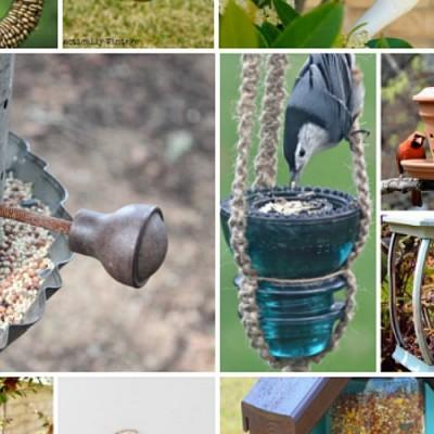 15 Repurposed Bird Feeder Projects