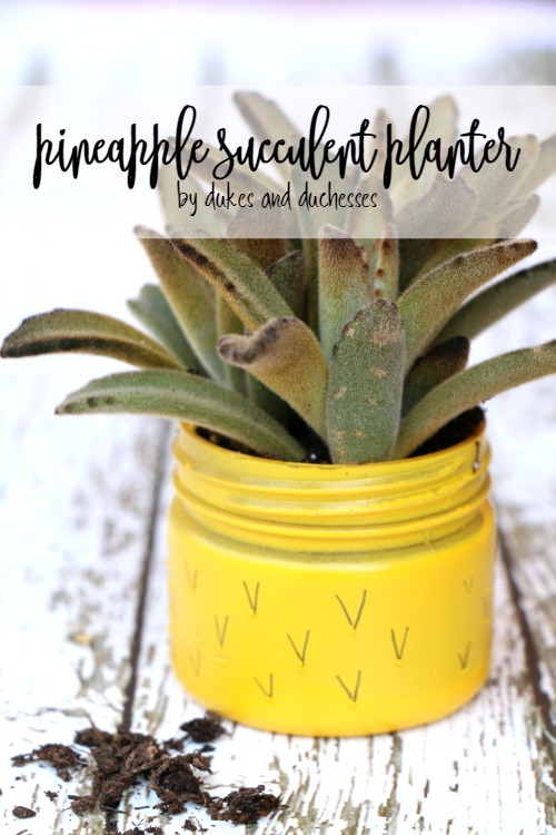 pineapple succulent planter