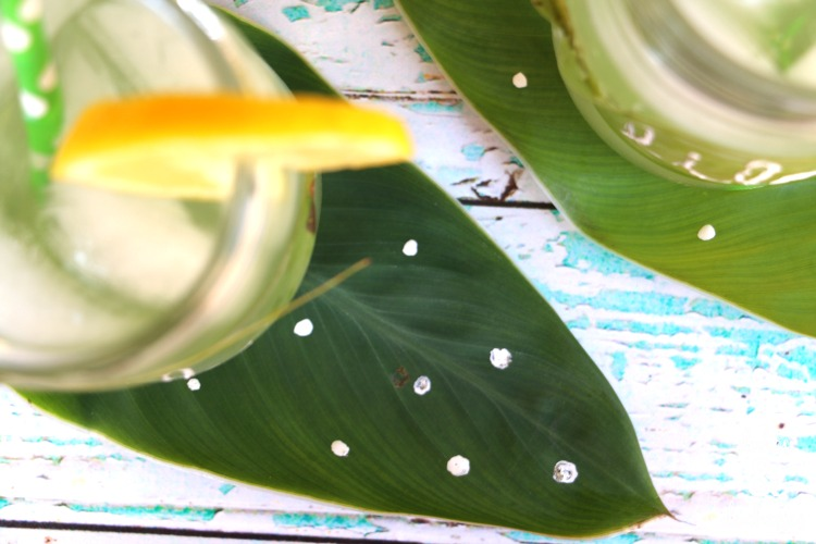 leaf glass markers and coasters