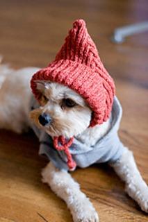 knit pixie dog hat