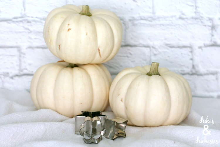 supplies for dip dyed patterned pumpkins