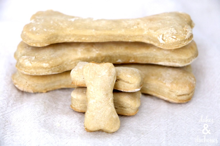 apple dog cookie recipe