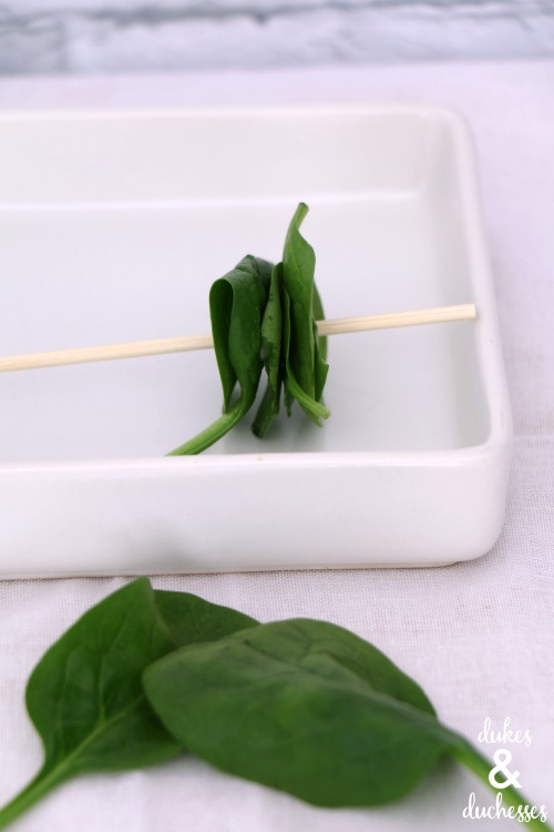 spinach on skewer