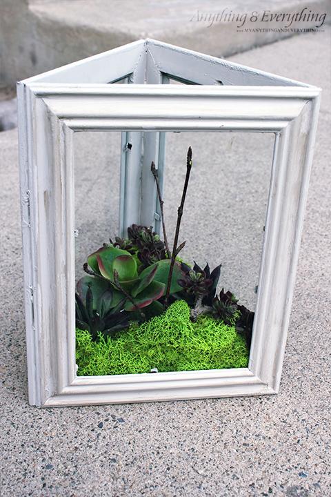 upcycled frame terrarium