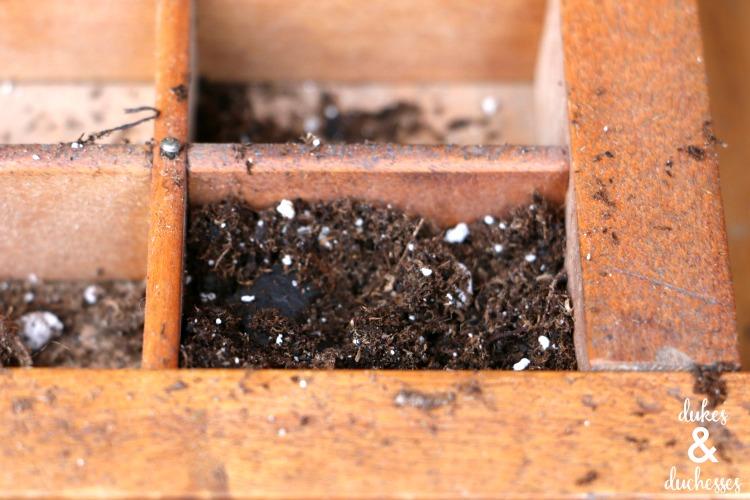 potting soil for vertical succulent garden