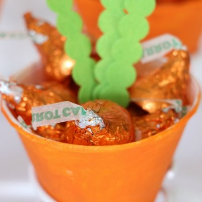 Carrot Treat Cones