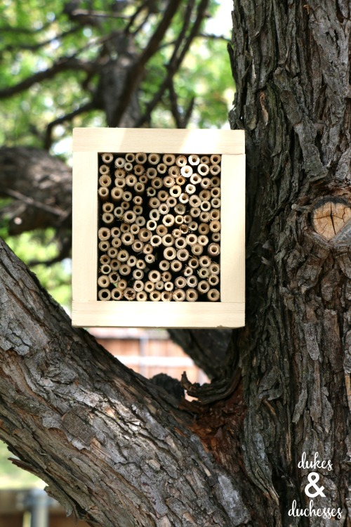 how to make a bee house with bamboo