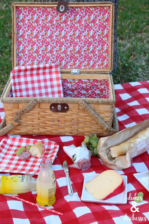 outdoor picnic for summer