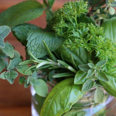Fresh Herb Bouquet Hostess Gift