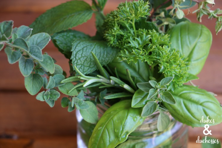 Fresh Herb Bouquet Hostess Gift